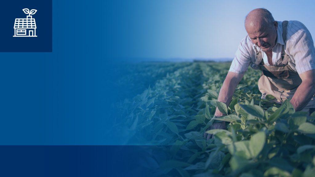 Развитие на устойчиво селско стопанство