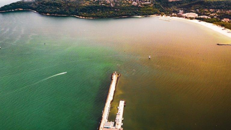 Питане на Стела Николова за замърсяването на Варненското езеро
