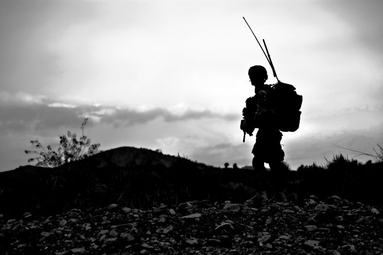 Питане за програмата за отбранителните способности на България